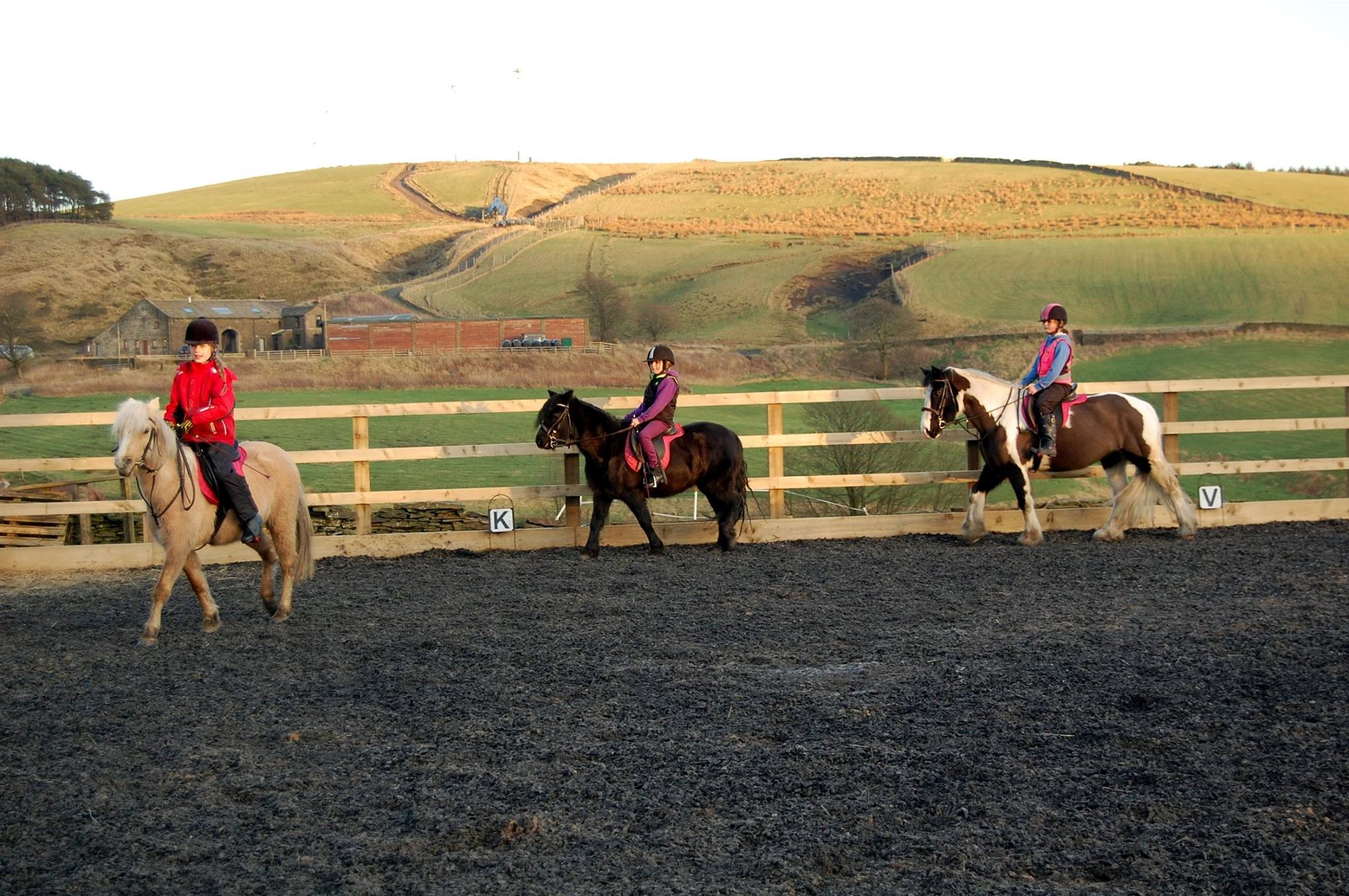 Weir Riding centre ponies for horse riding in Rossendale page on the Visit Rossendale website
